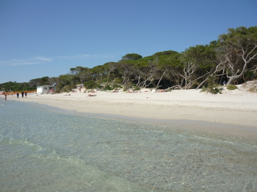 Maria Pia beach Maria Pia beach (Spiaggia di Maria Pia) Alghero Sardinia Italy