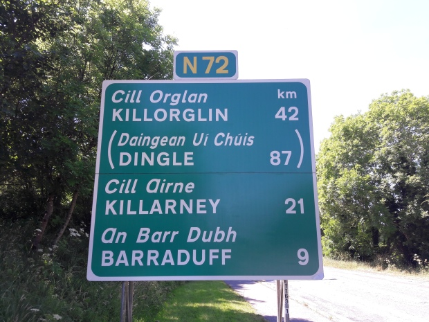 Sample of a National road sign in Ireland