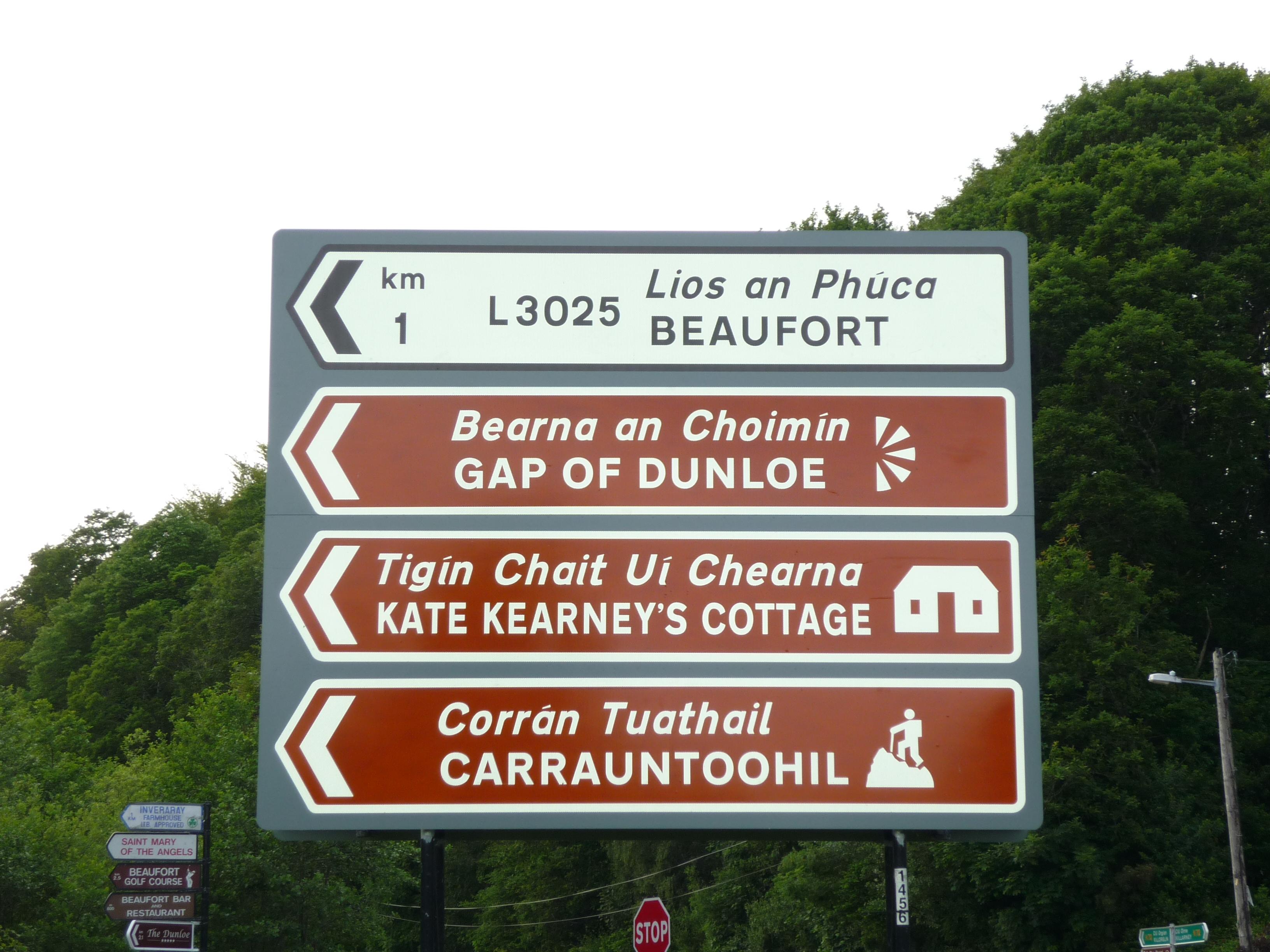 Road sign in Ireland